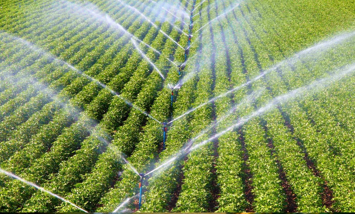 سیستم آبیاری مکانیزه - رامش گل