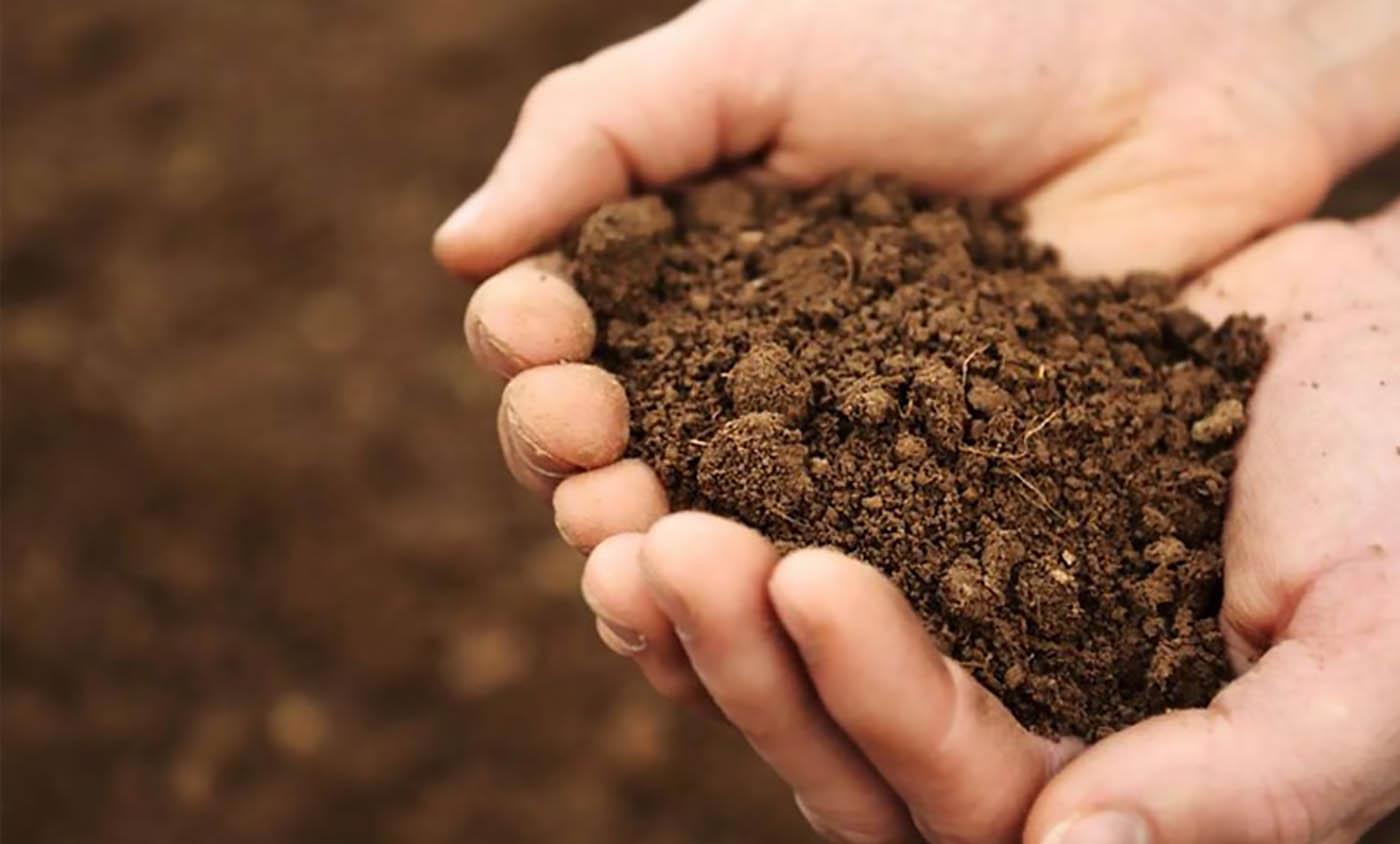 خاک و کود